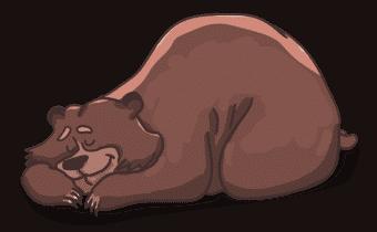 Humoros írás a medvéről