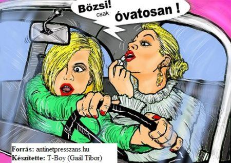 Sofőr karikatúra, T-Boy