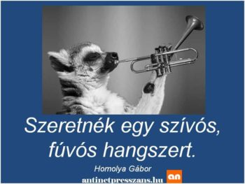Humoros hangszer