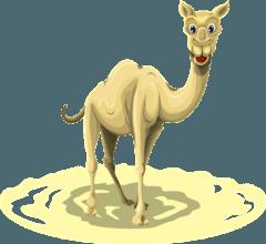 Humoros teve ismertető