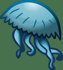 Humoros medúza ismertető