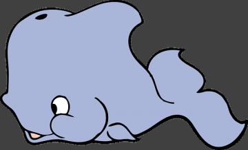 Humoros delfin leírás