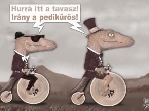 Humoros lábápolás karikatúra